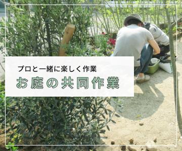 プロと一緒に楽しく作業 お庭の共同作業